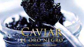 Caviar, el oro negro