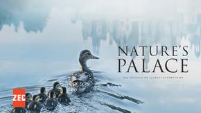 Nature's Palace